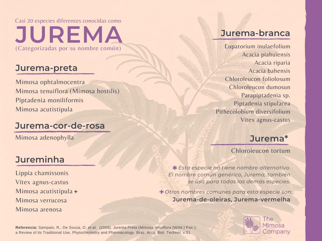 Diferentes especies conocidas como Jurema