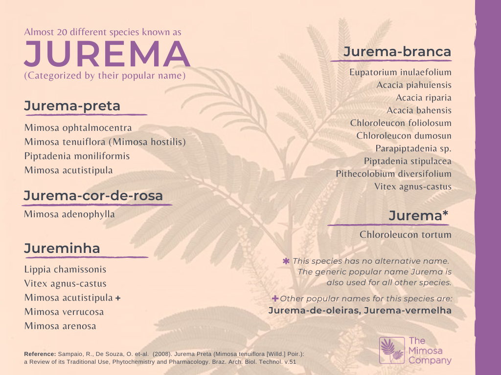 Different species known as Jurema