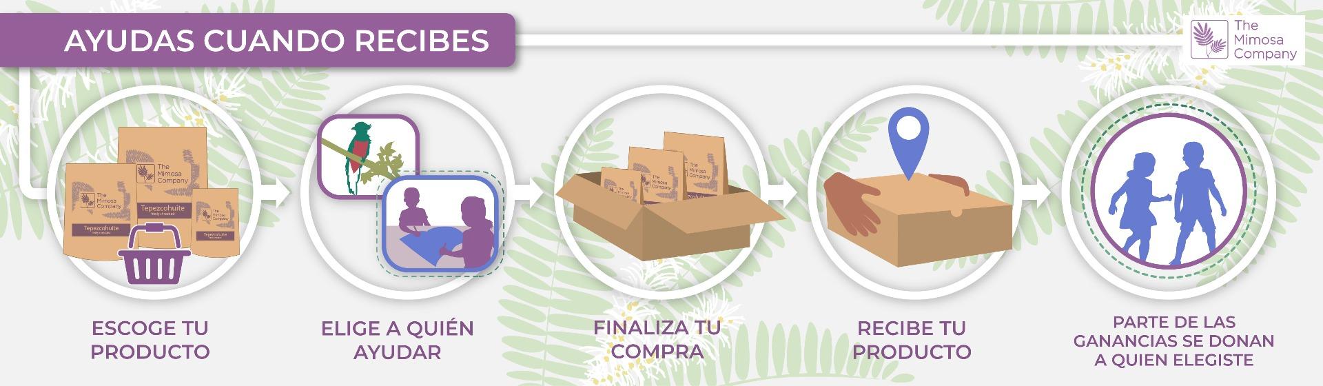 The Mimosa Company