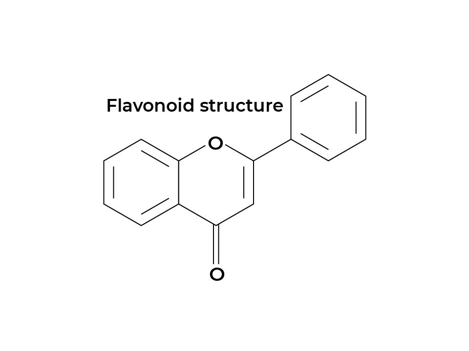 Flavonoids structure