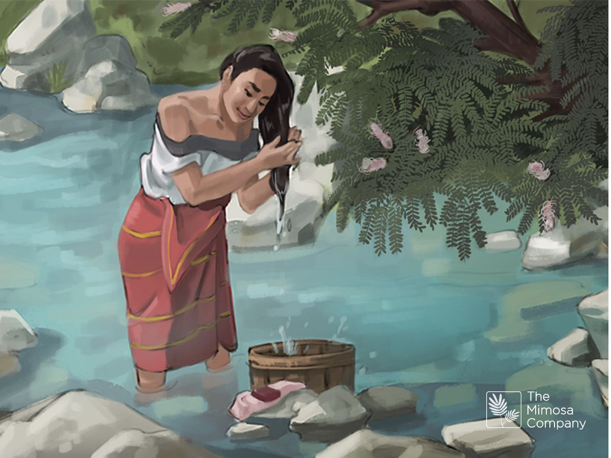 Indigenous woman washing her hair with Mimosa hostilis