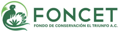 Foncet_logo